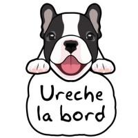 Autocolant Bulldog francez la bord (personalizat)