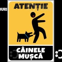 Indicator Atentie Cainele musca