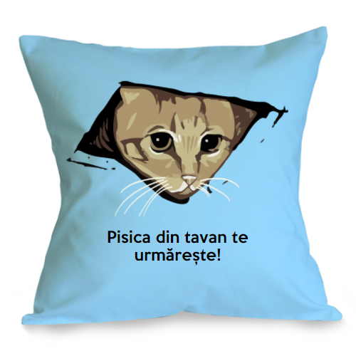 Perna Pisica din tavan