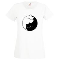 Pisici Yin Yang