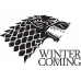 Tricou Winter is coming