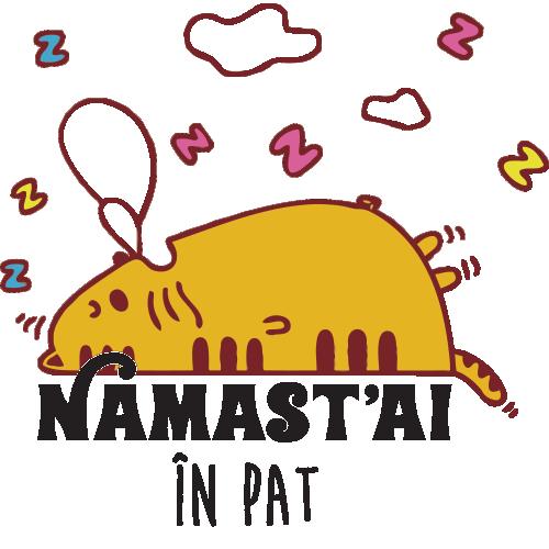Cana Namast'ai in pat