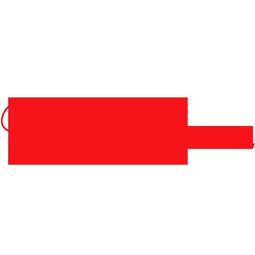 Panglica Team Bride caligrafic