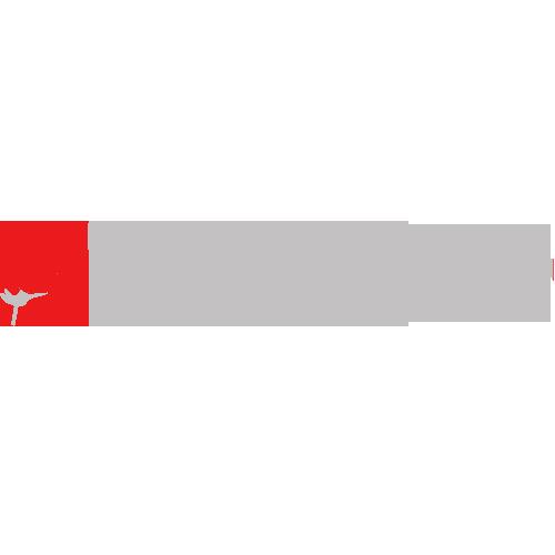 Panglica The Godmother trandafir