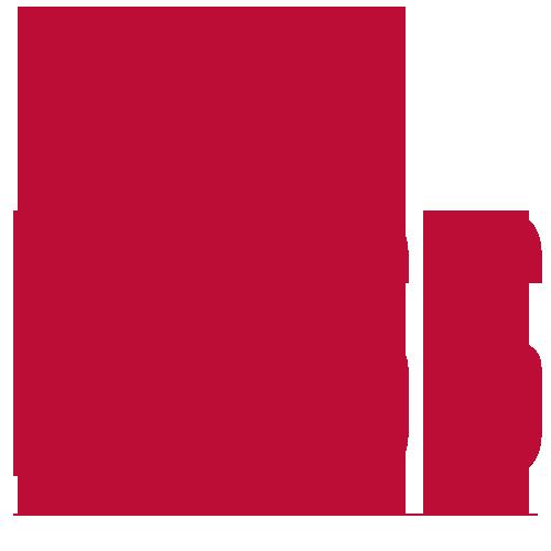 Tricou The Boss
