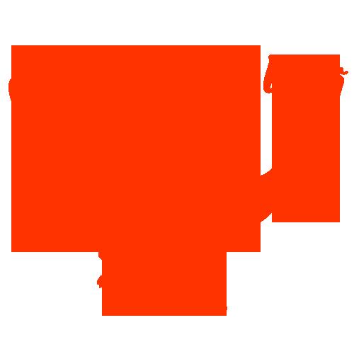GravidoZaura