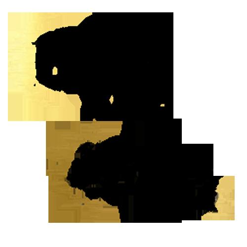 Tricouri pentru cuplu Luna si Soarele